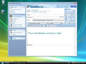 Win Vista Screenshot get admin privileges 3